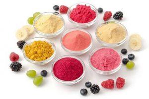 Fruit Powders Market