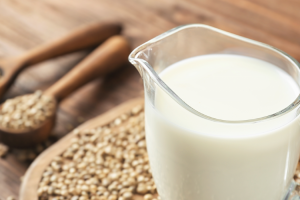 Hemp Seed Milk Market